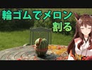 【野良猫襲来】にじさんじフミ 輪ゴムでメロンを割る【センシティブ発言】