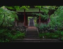 雨の常寂光寺