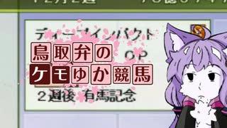 【総力を挙げて】鳥取弁のケモゆか競馬 特別編part4【ディープインパクトを粉砕する】