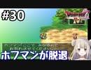 #30【DQ4】ドラゴンクエスト4で癒される!!ホフマンが脱退【女性実況】