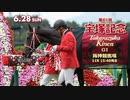 【中央競馬】プロ馬券師よっさんの第61回 宝塚記念(GⅠ)