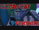 SwitchからPS4に移行した人のフォートナイト実況プレイPart25【FORTNITE】