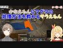 【Minecraft】かなえもんにマグマの処理方法を教わるサラえもん【にじさんじ切り抜き】
