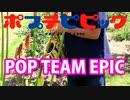 アルトサックスで「POP TEAM EPIC」(ポプテピピック)を吹いてみた