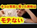 ネコと写真に写った男性はモテない