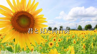 【AIきりたんオリジナル曲】君と見た向日葵