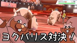【ポケモン剣盾】対戦ゆっくり実況037 ヨクバリスミラーマッチ対決!!