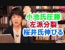東京都知事選で小池百合子氏圧勝、左派ボロボロ、桜井誠氏票伸ばす