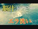 [デイシーバス]最高にエキサイティングなエラ洗いだった川シーバス