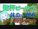 【聖杯ピーマン】ゲームタイトルから予想してた通りやっぱりバカゲー【実況】