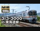 【JR東海】313系3000番台 in 東海道線  〜Collection Vol.09〜