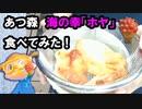 【あつ森 食材料理】人生初、海の幸「ホヤ」実際に食べてみた【ピヨ・あつまれ動物の森】修正