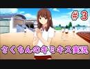 【キミキス】この夏、君に恋をしたい【実況プレイ動画】#3