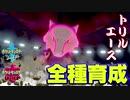 【ポケモン剣盾実況】全種育成その19【ガラガラ】