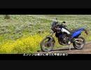 【字幕】テネレ700は本当に特別なバイクなのか by FortNine 【レビュー】