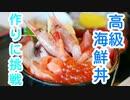 【高級海鮮丼】大都会お台場で釣った魚だけで高級海鮮丼作りに挑戦!! #1