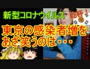 ゆっくり雑談 244回目(2020/7/18)