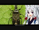 【ハナカメムシ】動物たちの性事情【VOICEROID解説】