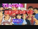 【歌ってみた】世界が終るまでは・・・【WANDS/gyogyo】