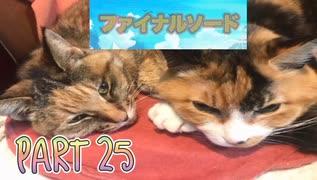 【実況】ファイナルソード(笑)やろうぜ! その25ッ!