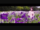【Alba 須田景凪】カバー オリジナルMV あまつぶドロップ