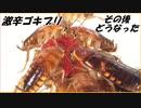 「世界で一番辛いグミ」を食べた激辛ゴキブリのその後。