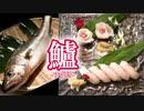 【握ってみた】江戸前寿司の定番!スズキの握り寿司とお刺身の作り方!