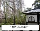 東方星戦争 第12話 庭師と騎士 thumbnail