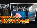 【5000℃】超高温の拳銃パンチで敵を一撃粉砕するシャコ【深世海】part4
