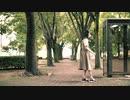 【メガネコ汰23】プラトニック・ラヴ 踊ってみた【2周年】