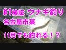 【#1 検証】11月でもウナギが釣れるのか検証!名古屋市内某川でドバミミズ最強説!?