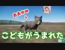 【繁殖成功】パパと一緒に動物園作ってみた part3【プラネットズー ゲーム実況】