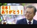 【韓国の反応】文大統領「韓国政府は日本との関係を非常に重視している、日本に感謝を伝えたい」【世界の〇〇にゅーす】