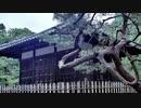 第206回『女性宮家を阻止するための障害』【水間条項TV】会員動画