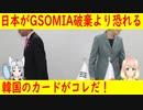 【韓国の反応】これはグッド!日本がGSOMIA破棄より恐れる韓国のカードがこちら!【世界の〇〇にゅーす】