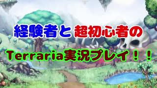 経験者と超初心者のTerraria(マスターモード)実況プレイ! Part14