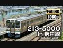 【JR東海】213系5000番台 in 飯田線 ~Collection Vol.08~