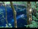 癒しの時間2 素敵な歌を青い森の風景と共に・・・