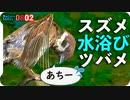 0802【スズメとツバメの水浴び】カルガモ親子。コサギ捕食とカワセミどアップ。ハト交尾未遂など【今日撮り野鳥動画まとめ】身近な生き物語