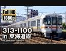 【JR東海】313系1100番台 in 東海道線 〜Collection Vol.02〜