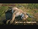 Red Dead Redemption 2 レッド・デッド・リデンプション 2 オンライン 寝ているクーガーを眺めるだけの動画