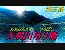 【散策】大洞川吊り橋