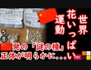 Kには来てないみたい... 【江戸川 media lab R】お笑い・面白い・楽しい・真面目な海外時事知的エンタメ