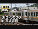 【JR東海】313系3000番台 in 東海道線 〜Collection Vol.10〜