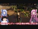 琴葉姉妹と行く釣行記録(ゲーム編part5)