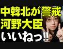 【周辺国が警戒する河野太郎】すべきことをしようとする日本。周辺国が警戒。ファイブアイズ加盟、弾道ミサイル導入などについて解説