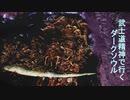 【ゲーム実況】武士道精神で行く、縛りプレイダークソウル 第12話