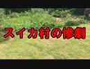 【悲報】スイカ村の惨劇【キッチン・ガーデン #25】