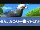 【実況】人間はあきらめて鳥類と恋愛する!【はーとふる彼氏-Hatoful Boyfriend-】#8