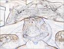 ケヅメリクガメ 沙原さんのマッタリ入浴♨。